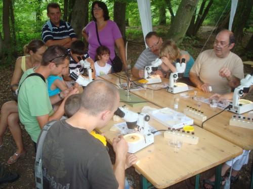 Fête des abeilles à l'aquascope en 2011