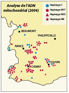 Types génétiques (lignées C ou M) des colonies étudiées dans le sud-Hainaut (d'après Garnery)