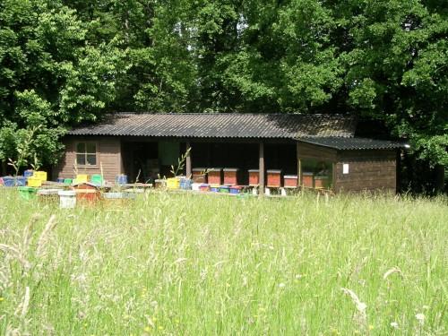 Rucher de l'école d'apiculture à l'Aquascope